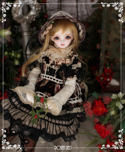 Wednesday's Child Limited Daisy - Winter Marchen