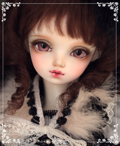 Wednesday's Child Limited Daisy - For Christmas with Rosenlied