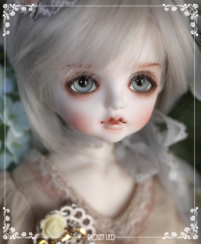 Tuesday's Child Limited Harmony - Silver moon